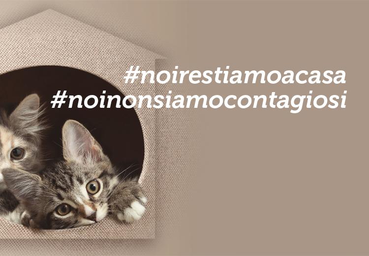 #noirestiamoacasa #noinonsiamocontagiosi